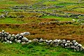 Brinlack - Stone walls - geograph.org.uk - 1180346.jpg