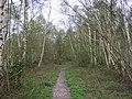 Broadmoor Bottom Nature Reserve - geograph.org.uk - 1252932.jpg