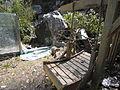 Broken panda house.jpg