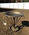 Bronze Laver (28047332129).jpg