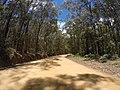 Brooman NSW 2538, Australia - panoramio (109).jpg