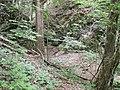 Bubovický potok - panoramio (4).jpg