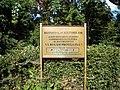 Bucuresti, Romania, Parcul Cismigiu; B-II-a-A-19655 (6).JPG