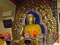 Buddhist monastery, dharamsala,himachal pradesh.JPG