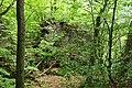 Burgruine Steinegg - Zugang Südseite.jpg