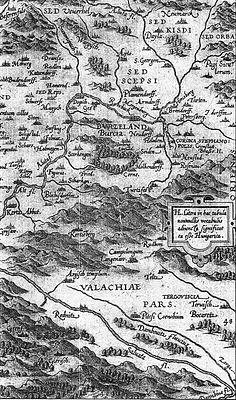 Burzenland-Sambucus-1566.jpg