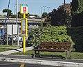Bus stop Quai du Pavois d'Or, Sète cf01.jpg
