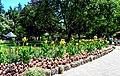 Butchart Gardens - Victoria, British Columbia, Canada (28906025370).jpg