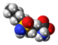Buthionine-sulfoximine-zwitterion-3D-spacefill.png