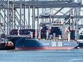 CMA CGM Blue Whale (ship, 2017) IMO 9317963 Amazondehaven pic2.jpg