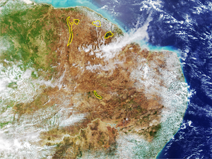 Caatinga moist-forest enclaves - Satellite picture showing the localization of Caatinga enclaves moist forests in northeastern Brazil (yellow lines enclose the WWF defined limits).