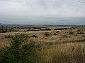 Camas Prairie NPS.jpg