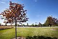 Campus Fall 2013 112 (10291845484).jpg