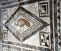 Casa di paquius proculus, cortile con mosaici 05 pavone.jpg
