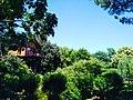 Casa sull'Albero Awen.jpg