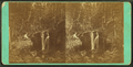 Cascade on Crystal Stream, White Mts. N.H, from Robert N. Dennis collection of stereoscopic views.png