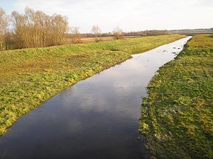 Česma - Česma river at Narta near Bjelovar.