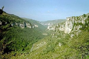 Typical view of the mountainous Cévennes area ...