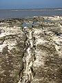 Chalk outcrop extending seawards - geograph.org.uk - 792758.jpg