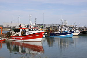 Chalutiers de pêche côtière (16).JPG