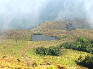 Chembra Peak - Lake en route to the top of Chembra Peak
