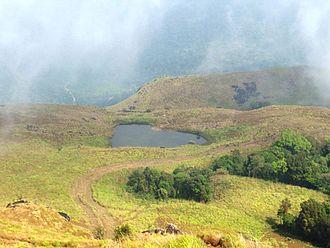 Meppadi - Image: Chembra lake