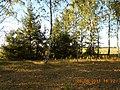 Cherkas'kyi district, Cherkas'ka oblast, Ukraine - panoramio (243).jpg