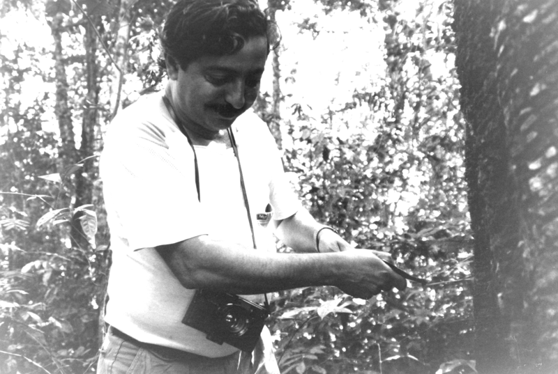 File:Chico Mendes at rubber tree.png
