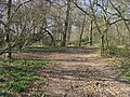 Chiltern Way - geograph.org.uk - 1270060.jpg