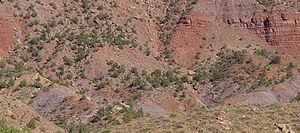 Geology of the Zion and Kolob canyons area - Chinle Formation