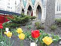 Christ Church Cathedral Montreal 62.JPG