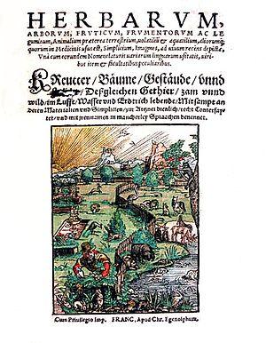 Christian Egenolff - Title page of Herbarum, arborum, fruticum, frumentorum ac leguminem