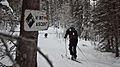 Christmas Ski (6573407733).jpg