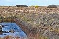 Clochar na Lará (Cloghernalaura) - geograph.org.uk - 1294294.jpg