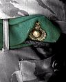 Close up of a Royal Marine's beret, on standby on board HMS Bulwark. MOD 45146104.jpg