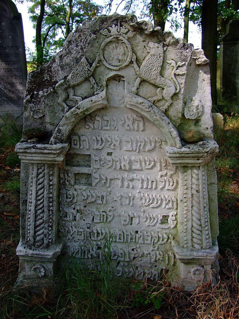 Cmentarz żydowski w Dobrodzieniu13.JPG