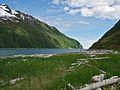 Coastal medaow KEFJ (9025145877).jpg