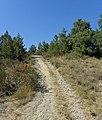 Col de Fillols près de Vernet-les-Bains - panoramio.jpg