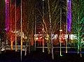 Coloured Trees (6481395133).jpg
