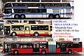 Comparison of omnibus and MegaLiner and CitaroG.jpg