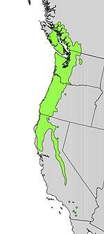 Cornus nuttallii range map.jpg
