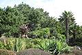 Coronation Park Jersey 2012 21.jpg