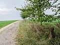 Cossen Steinkreuz I-1.jpg