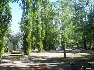 Cotter River - Picnic area adjacent to the Cotter River, near the Cotter Dam, 2005.