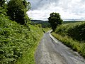Country lane going down from Ballavitchel Farm to Crosby - geograph.org.uk - 482045.jpg