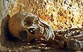 Crâne d'un martyr (Catacombes chrétiennes).JPG