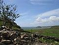 Criccieth and the Castle from Penrhyn Farm. - geograph.org.uk - 1282505.jpg