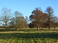 Crowsley Park - geograph.org.uk - 1059495.jpg