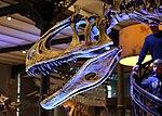 Cryolophosaurus ellioti J1.jpg