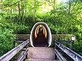 Cuyahoga Valley National Park (dd8dd7ae-83ea-467b-be2f-1c01f5192659).jpg